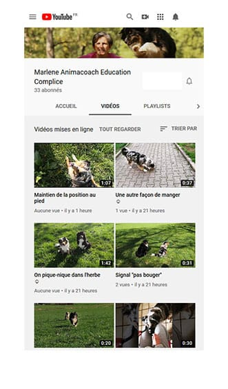 Chaine Youtube Animacoach éducation canine complice
